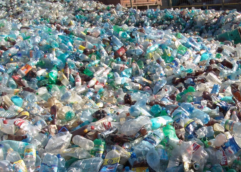 plastic_bottle_2013_10.jpg